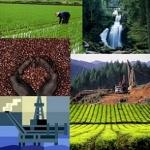 The Global Economic Landscape